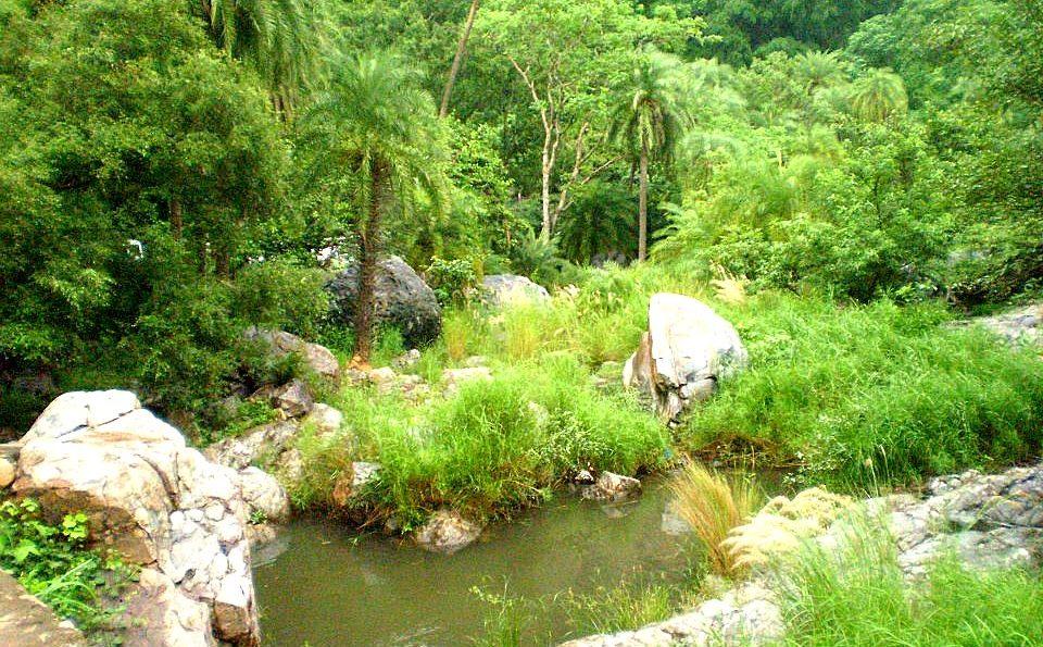 Sariska Tiger Reserve National Park